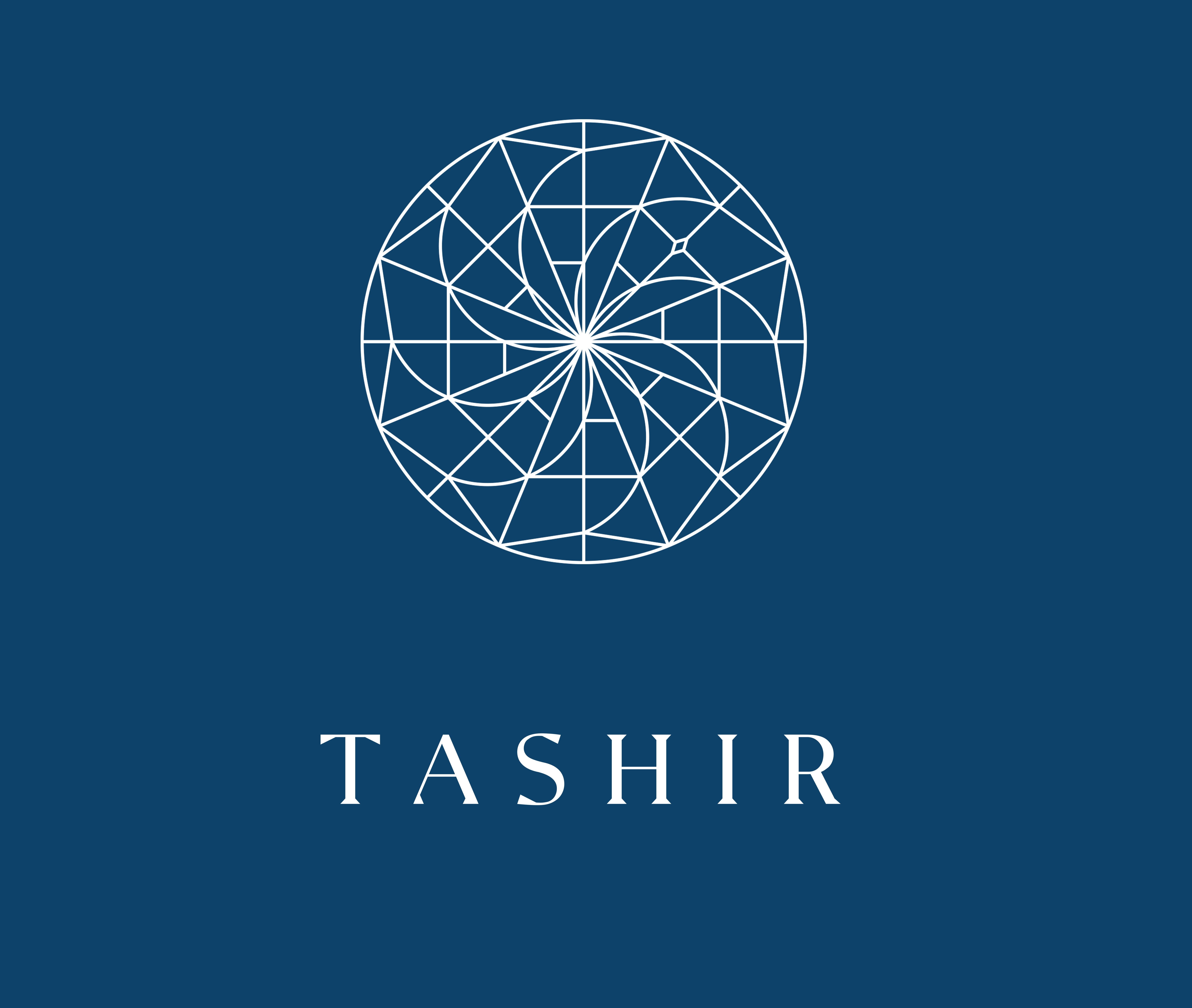 Tashir-grupp-riteyl.jpg